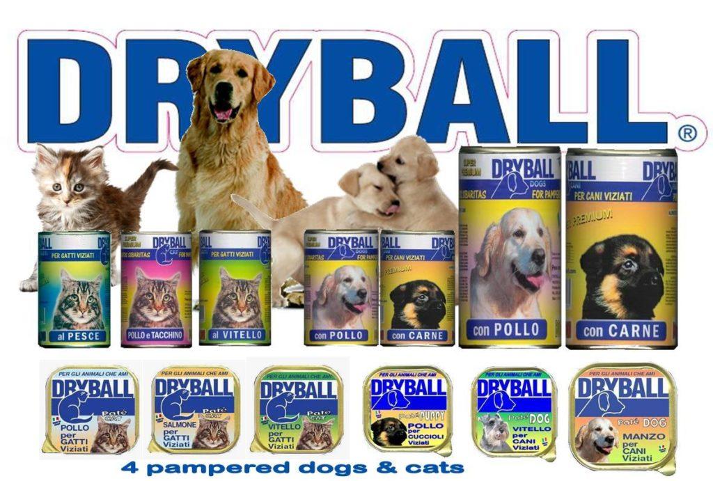 DRYBALL WET banner